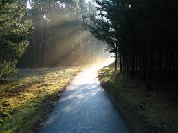 the way photo